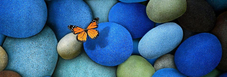 Outra borboleta